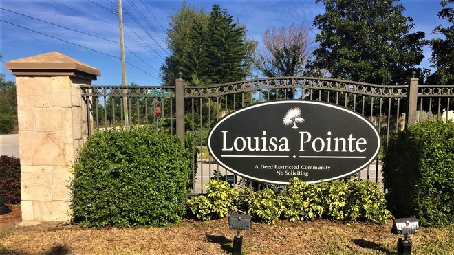 Louisa Pointe Homes For Sale in Clermont, Florida