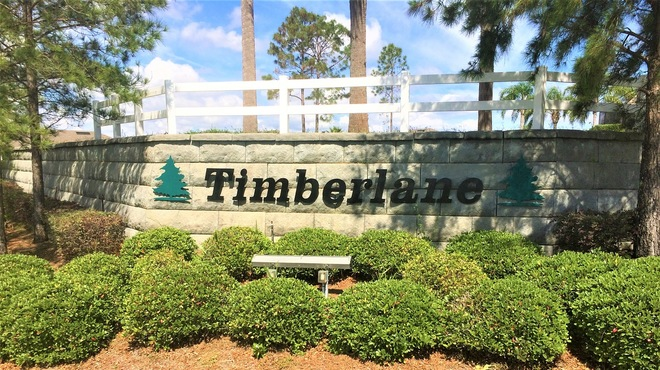 Timberlane Clermont FL Homes For Sale